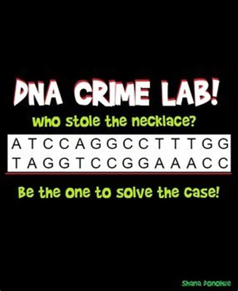 Essay on dna sequencing